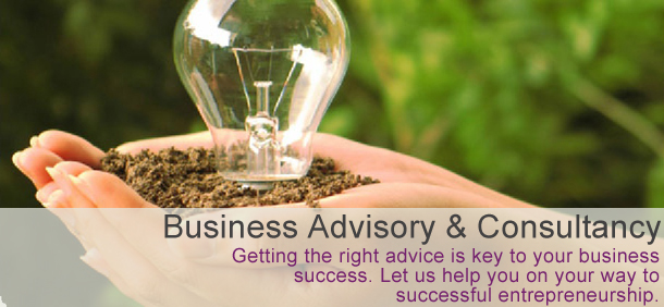 Busines Advisory and Consultancy